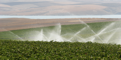SUBOR continues to give life to the irrigation projects.